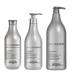 loreal expert silver